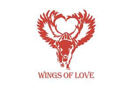 Wings-of-Love