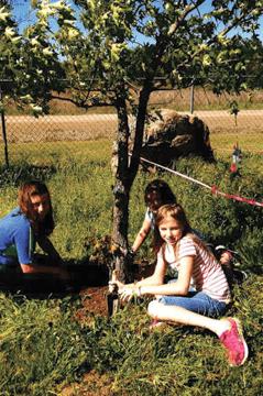 gardening2-FLASHCATS-web